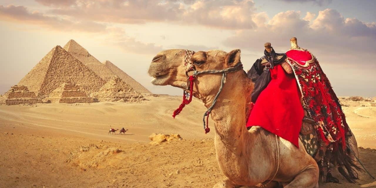 https://mytravelxp.com/wp-content/uploads/2021/02/egypt-camel-pyramids-giza-iStock-1139238705-narvikk-2048x1366-1-1280x640.jpg