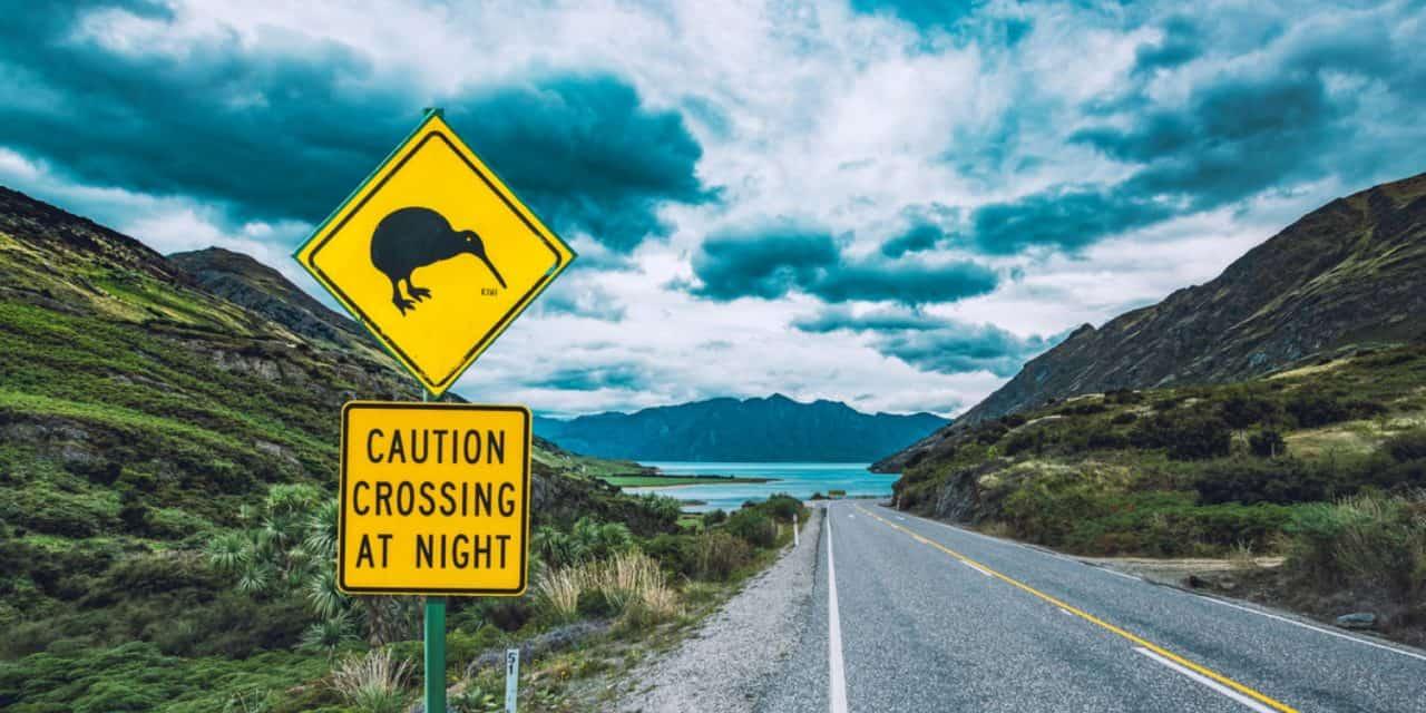 https://mytravelxp.com/wp-content/uploads/2021/05/new-zealand-kiwi-crossing-west-coast-south-island-iStock-1177580329-tobiasjo-2048x1365-1-1280x640.jpg