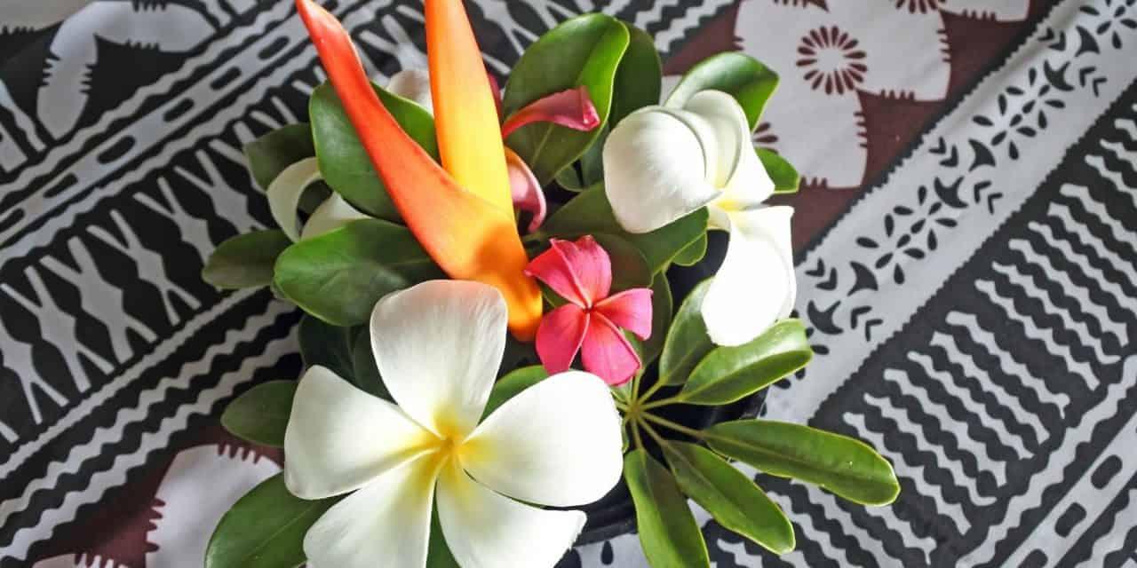 https://mytravelxp.com/wp-content/uploads/2021/09/fiji-flowers-cg-chameleonseye-MTE-travellers-2048x1366-1-1280x640.jpg